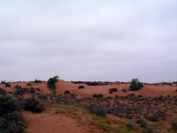Excursion Massa le Petit Desert et Tiznit
